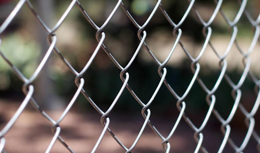 Uso de redes o alambre Contra ardillas